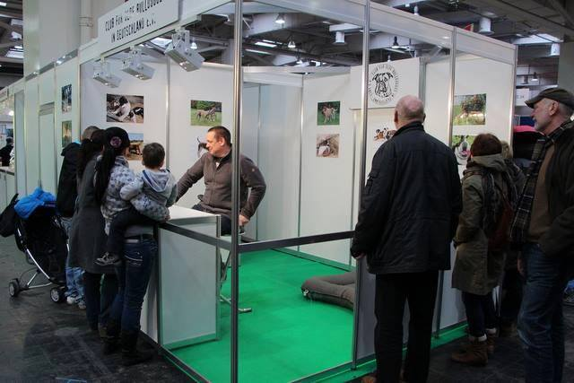 bersicht 2015 club f r olde bulldogges in deutschland cobd e v. Black Bedroom Furniture Sets. Home Design Ideas